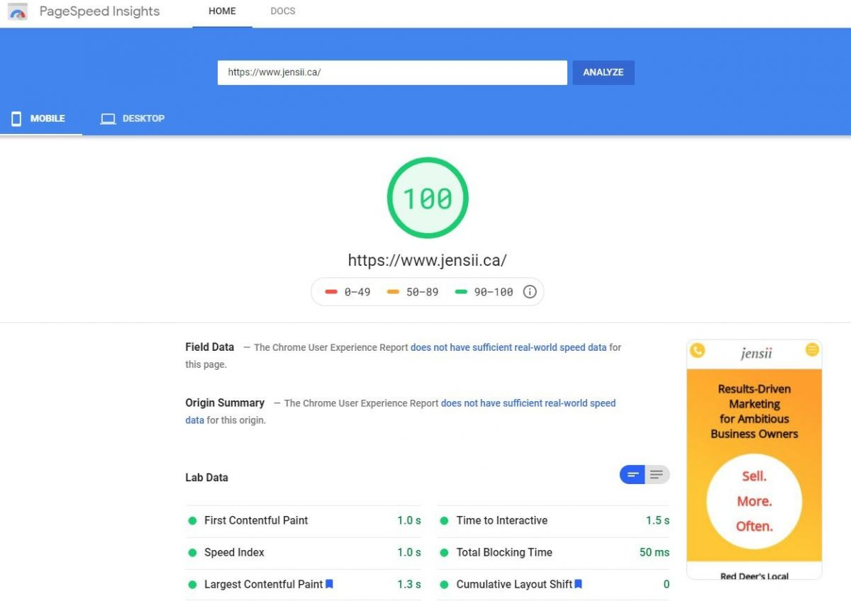 jensii.ca website scores 100 on Google Page Speed Insights